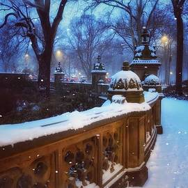 Evening Snow - Central Park New York by Miriam Danar