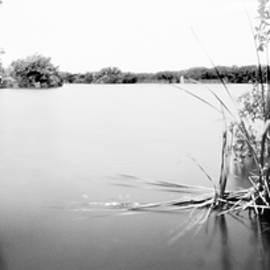 Everglades Paurotis Pond by Rudy Umans