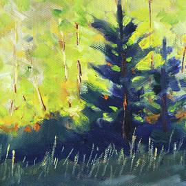 Evergreens and Sunshine by Nancy Merkle