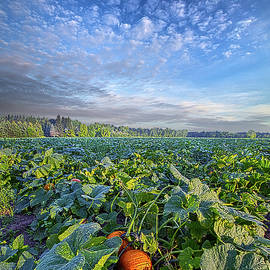 Exactly Where You Are Supposed To Be by Phil Koch