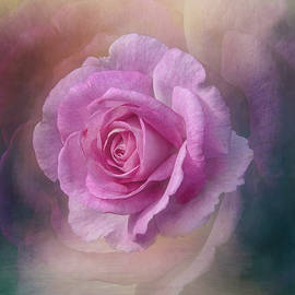 Exquisite Dusty Rose by Terry Davis