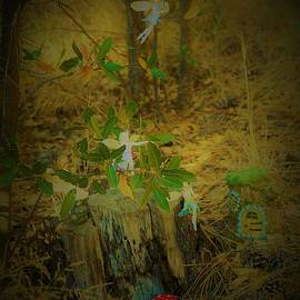 Fairies in the Forest by Elizabeth Pennington
