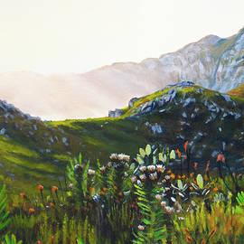 Fairy Glen Sunbeams by Christopher Reid