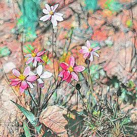 Fairy Lights 4 by Elaine Teague