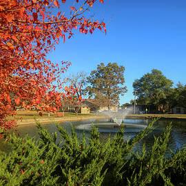 Fall at Janssen Park Mena Arkansas by Judy Vincent