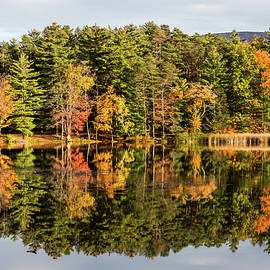 Fall Colors And Reflections by Elvira Peretsman
