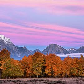 Fall colors at Grand Teton  by Kamalika Roy