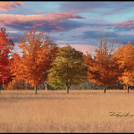Fall colors by Daniel  T DuLany