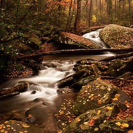 Fall forest river by Sarah-jane Laubscher