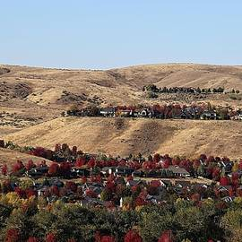 Fall in a Mountain Community by Bobbie Moller