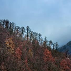 Fall In Mountains by Margarita Buslaeva