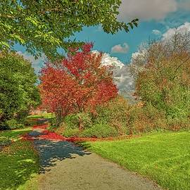 Fall in the garden #k3 by Leif Sohlman