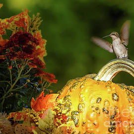 Fall magic by Rudy Viereckl