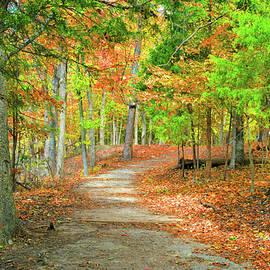 Fall Path At Clifty Falls by Robert Tubesing
