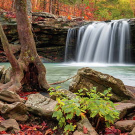 Fall Perfection At Falling Water Falls by Gregory Ballos
