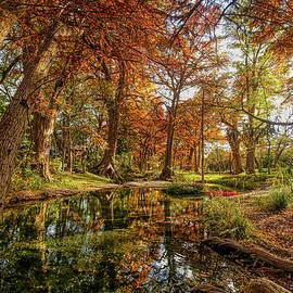Fall Reflections at Cypress Creek by Judy Vincent