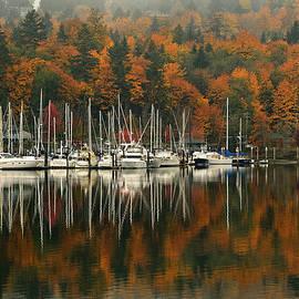 Fall Sail Sail Fall by Tim Coleman