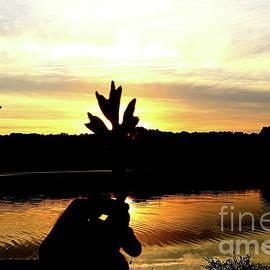 Fall Sunset - Dreams Of A Leaf by Scott D Van Osdol