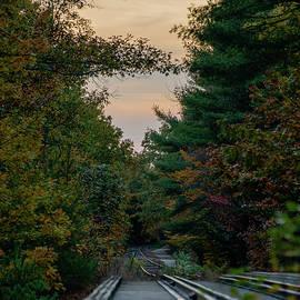 Fall Tracks by Benjamin Roberts