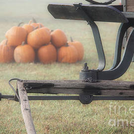 Fall Wagon And Pumpkins by Michele Hancock