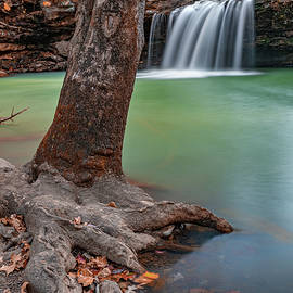 Fallen Leaves At Falling Water Falls by Gregory Ballos