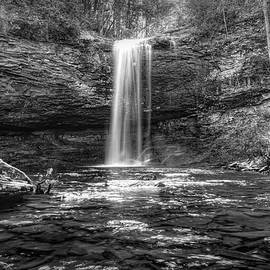Falling into Autumn Pools in Black and White by Debra and Dave Vanderlaan