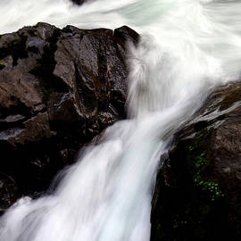 Falling Water, Sol Duc River by Douglas Taylor