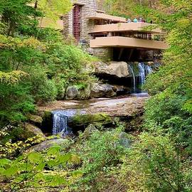 Fallingwater by AnnaJo Vahle