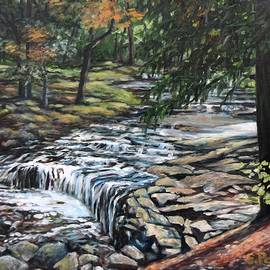 Falls on Vaughan Brook, Hallowell, Maine by Eileen Patten Oliver