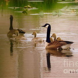 Family Outing by Bruce Brandli