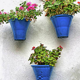 Famous Cordoba Blue Flowerpots # 2 by Allen Beatty