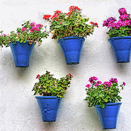 Famous Cordoba Blue Flowerpots by Allen Beatty