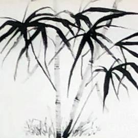 Fantasia - Sumi Ink  by Catherine Ludwig Donleycott