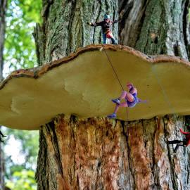 Fantasy Tree Climbers by Brian Wallace
