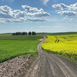 Farm Country Road by Jerry Abbott
