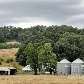 Farm - McMinnville Oregon by Oregon Photo