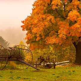Farmland Fall  by Ali Bailey