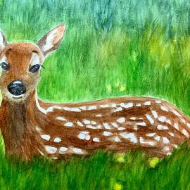 Fawns in the Spring by Forrest Fortier