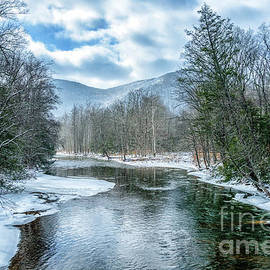 February Day along Williams River by Thomas R Fletcher