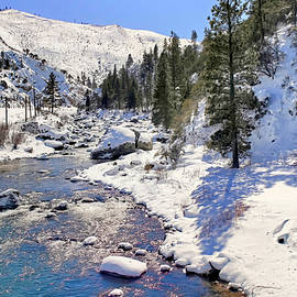 February on the Truckee River by Donna Kennedy