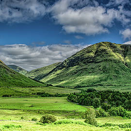 Feeling High in the Highlands by Marcy Wielfaert