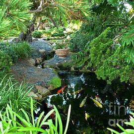 Fellowship Koi Pond by Julieanne Case