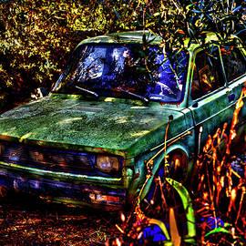 Fiat 127 - Sleeping Beauty in the Woods by Al Fio Bonina