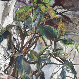 Ficus on the window - original mix-media artwork by Maria Shchedrina