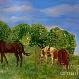 Field of Horses' Dreams by Kimberlee Baxter