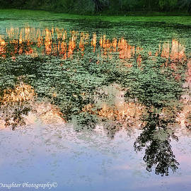 Fiery Reflections by Diane Shirley