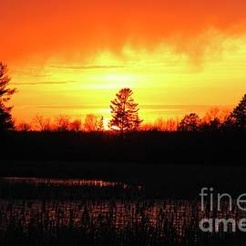 Fiery Sunset by Ann Brown