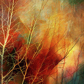 Fiery Winter Tree by Terry Davis