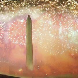 Finali - Washington Monument - Inauguration Day 2021 by Michele Avanti