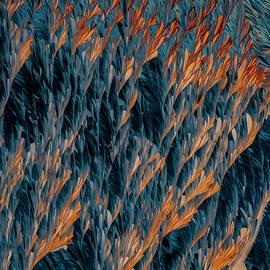 Fire and Ice by Jaroslaw Blaminsky